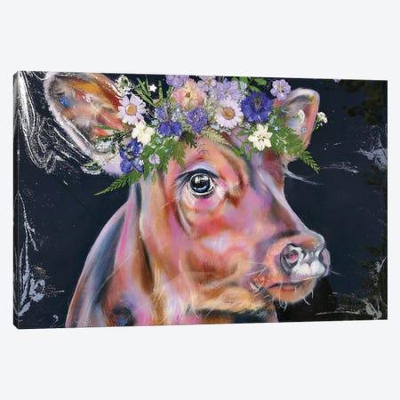 Evening Star Canvas Print #CGL62} by Carol Gillan Canvas Artwork
