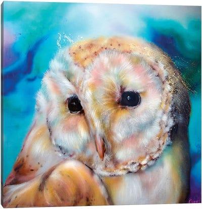 Northern Lights Owl Canvas Art Print