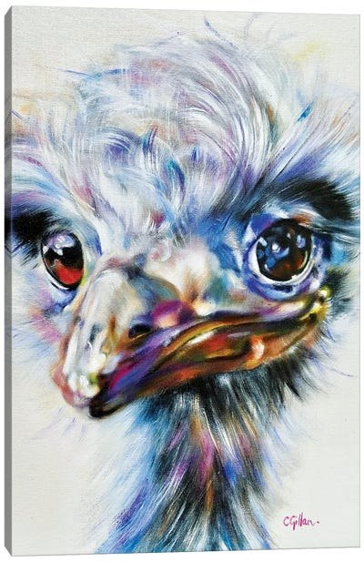 Shirley Canvas Art Print