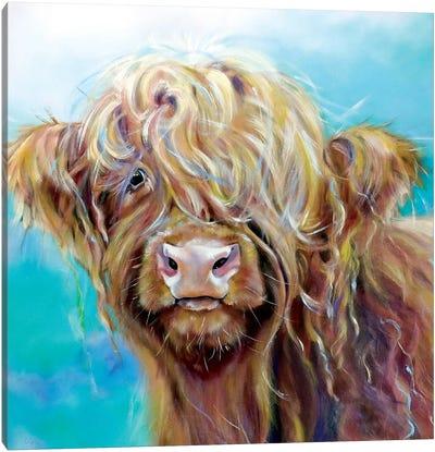 Highland Coo Canvas Art Print