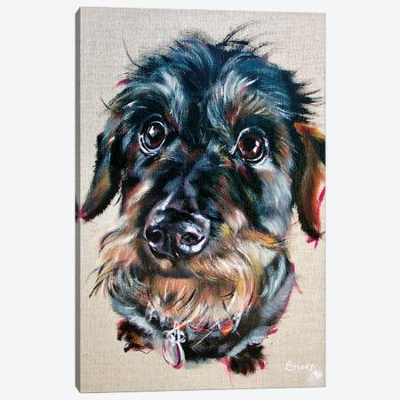 Buddy Canvas Print #CGL79} by Carol Gillan Art Print