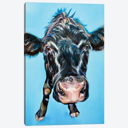 Moove Closer Canvas Print #CGL86} by Carol Gillan Canvas Print