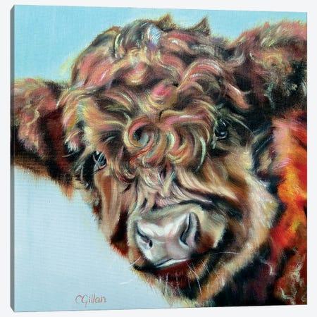 Robert Canvas Print #CGL89} by Carol Gillan Canvas Wall Art
