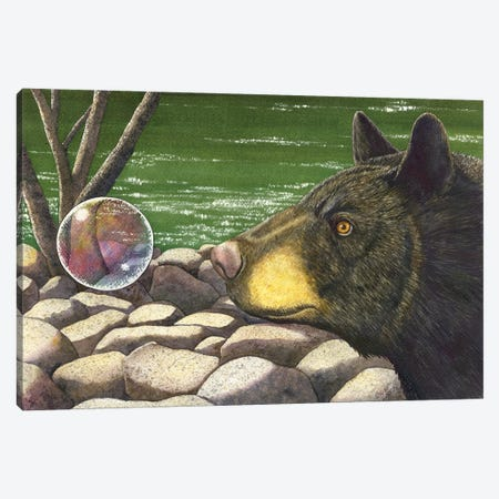 Bear Bubble Canvas Print #CGM11} by Catherine G McElroy Canvas Art
