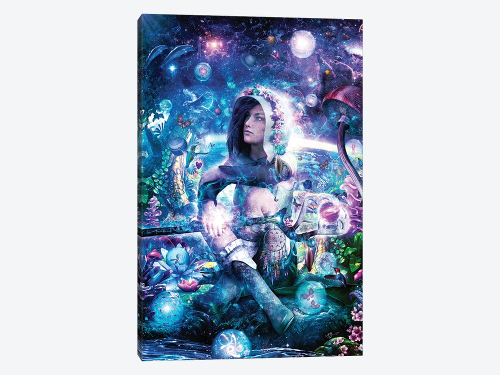Observing Our Celestial Synergy by Cameron Gray 1-piece Canvas Wall Art