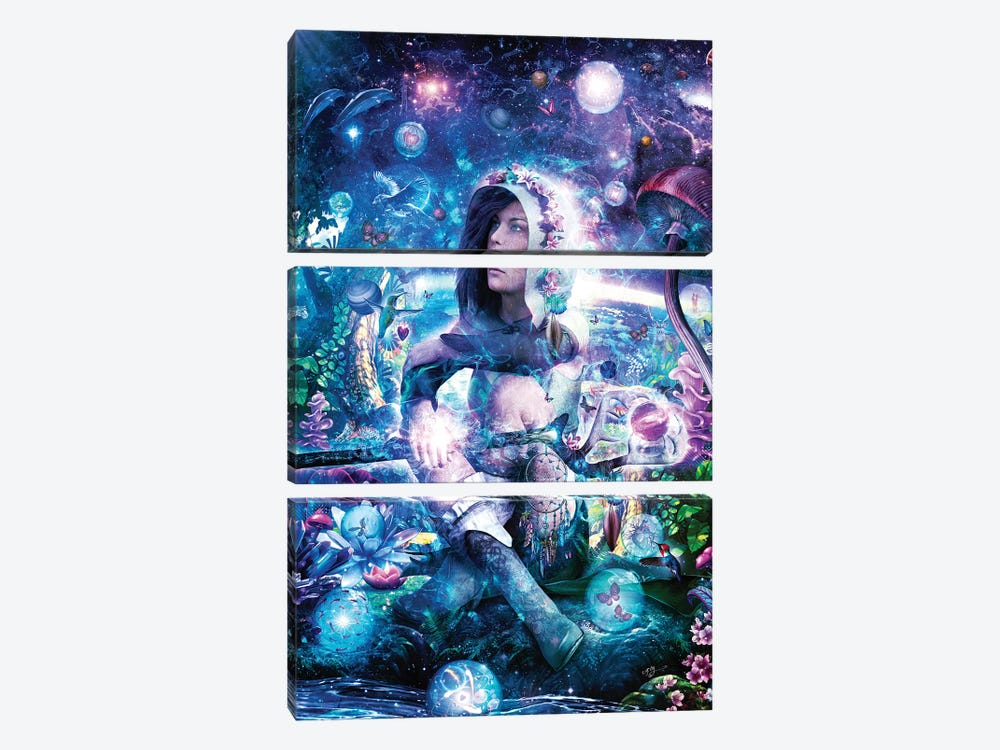 Observing Our Celestial Synergy by Cameron Gray 3-piece Canvas Wall Art