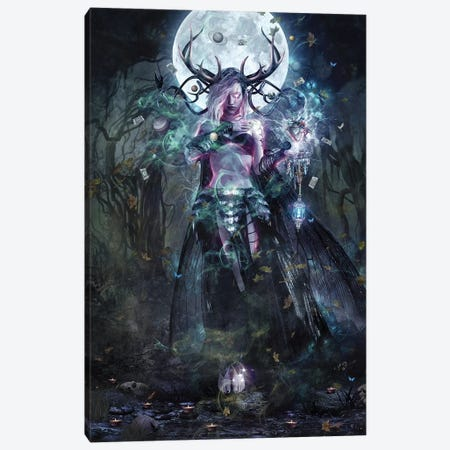 The Dreamcatcher Canvas Print #CGR21} by Cameron Gray Canvas Art