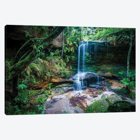 Burgess Falls, Blue Mountains, Australia Canvas Print #CGR67} by Cameron Gray Canvas Print