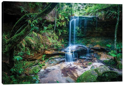 Burgess Falls, Blue Mountains, Australia Canvas Art Print