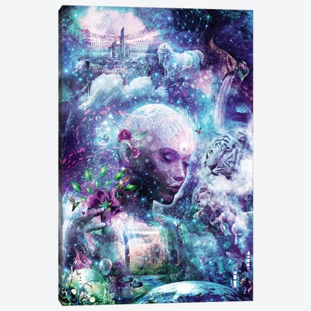 Discovering The Cosmic Consciousness Canvas Print #CGR7} by Cameron Gray Canvas Artwork