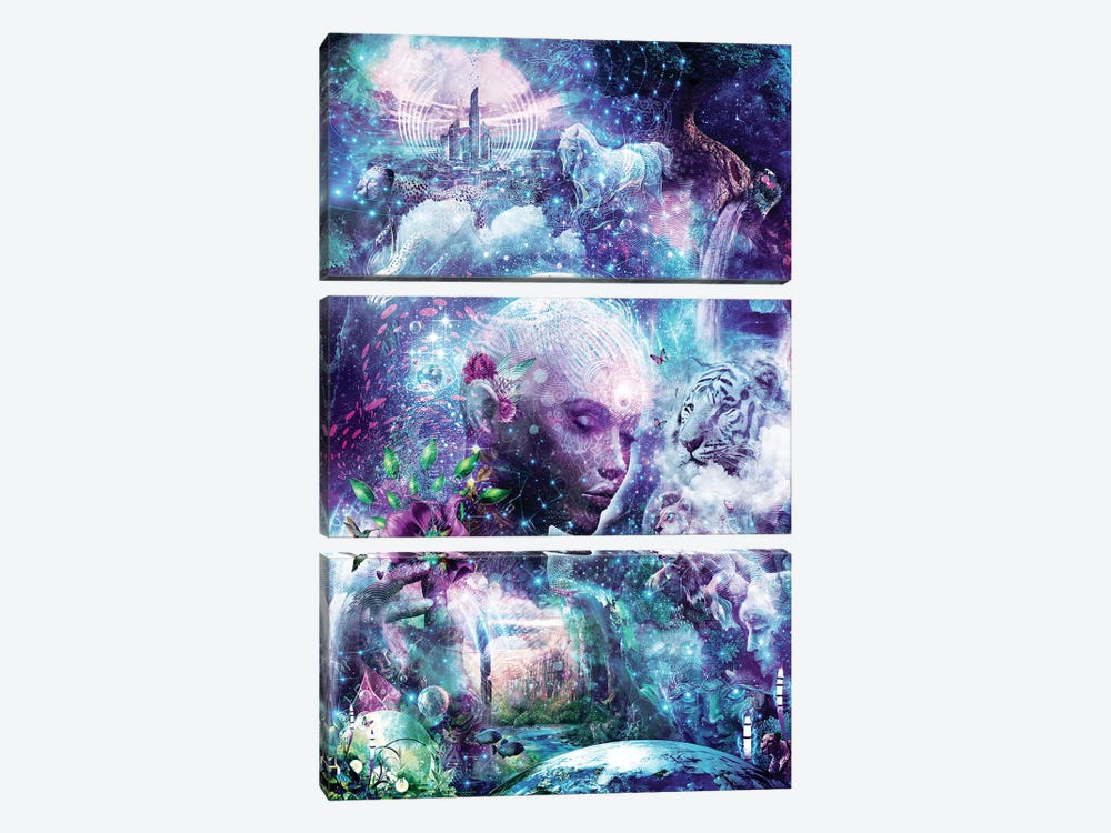 Discovering The Cosmic Consciousness by Cameron Gray 3-piece Art Print