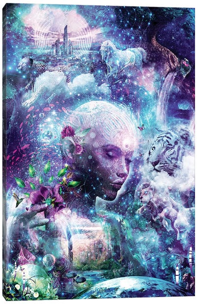 Discovering The Cosmic Consciousness Canvas Art Print