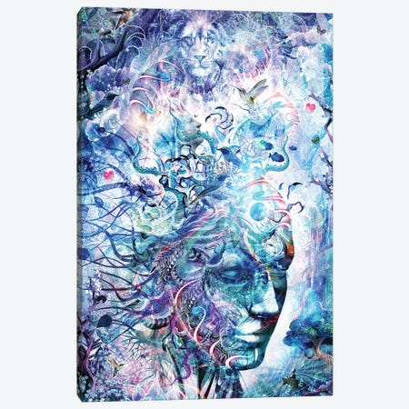 Dreams Of Unity Canvas Print #CGR8} by Cameron Gray Art Print
