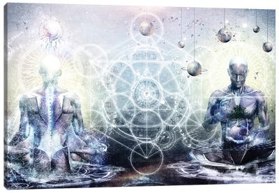 Experience So Lucid Discovery So Clear Canvas Art Print