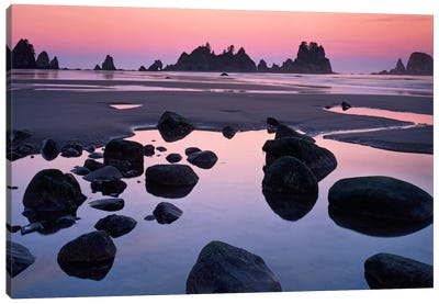 Point Of Arches, Shi Shi Beach, Olympic National Forest, Washington, USA Canvas Art Print