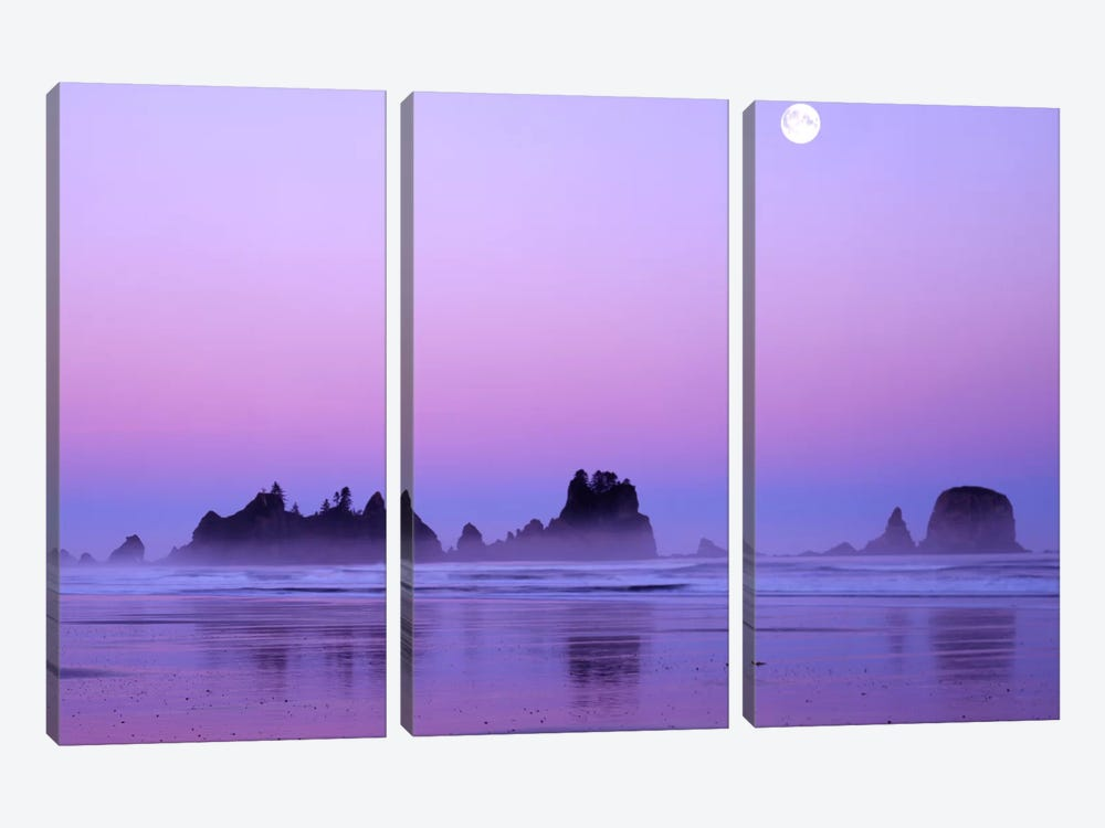 Magnificent Sunset With Full Moon, Point Of Arches, Shi Shi Beach, Olympic National Park, Washington, USA by Charles Gurche 3-piece Canvas Wall Art