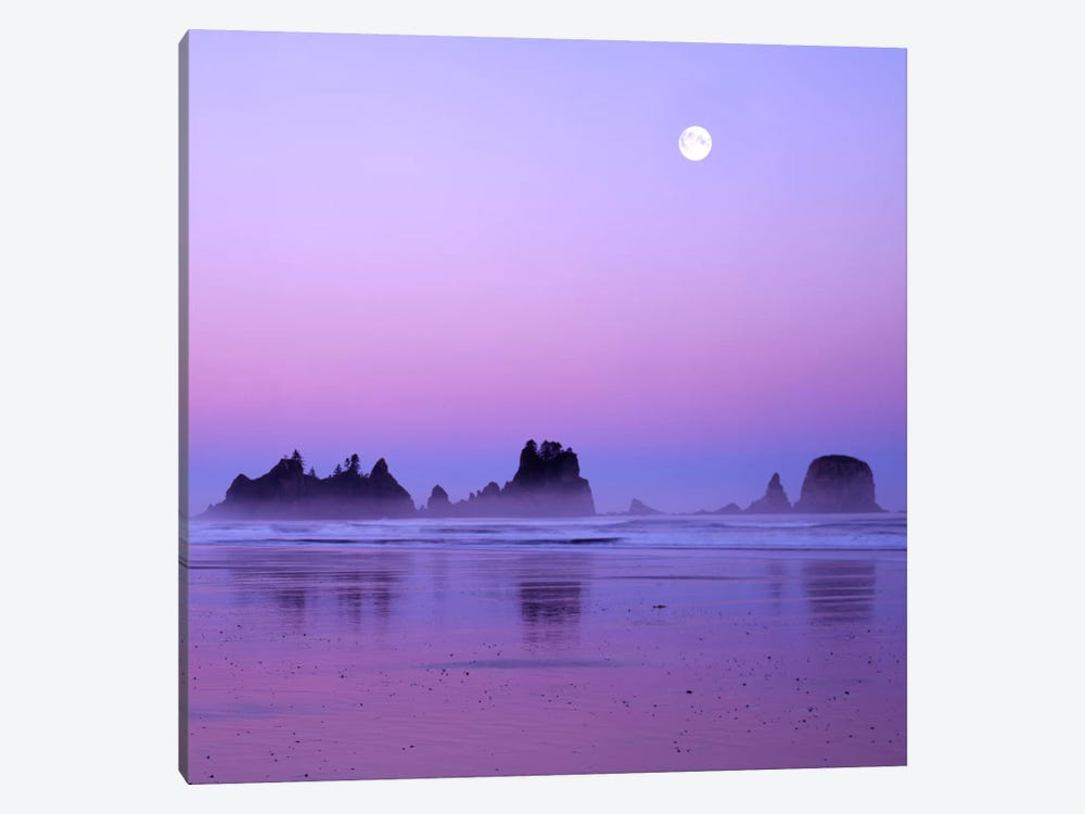 Full Moon At Sunset, Point Of Arches, Shi Shi Beach, Olympic National Park, Washington, USA by Charles Gurche 1-piece Canvas Print