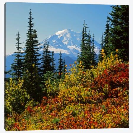 Mount Rainier With An Autumn Landscape In The Foreground, Mount Rainier National Park, Washington, USA Canvas Print #CGU9} by Charles Gurche Canvas Art