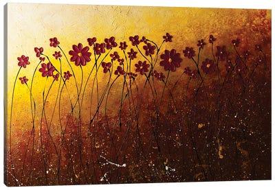 Fiori Di Campo Canvas Art Print
