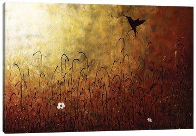 Chasing The Light Canvas Art Print