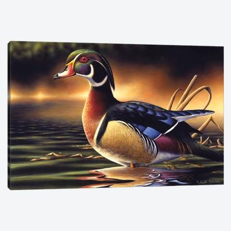 Backwood's Marsh Canvas Print #CHB11} by Chuck Black Art Print