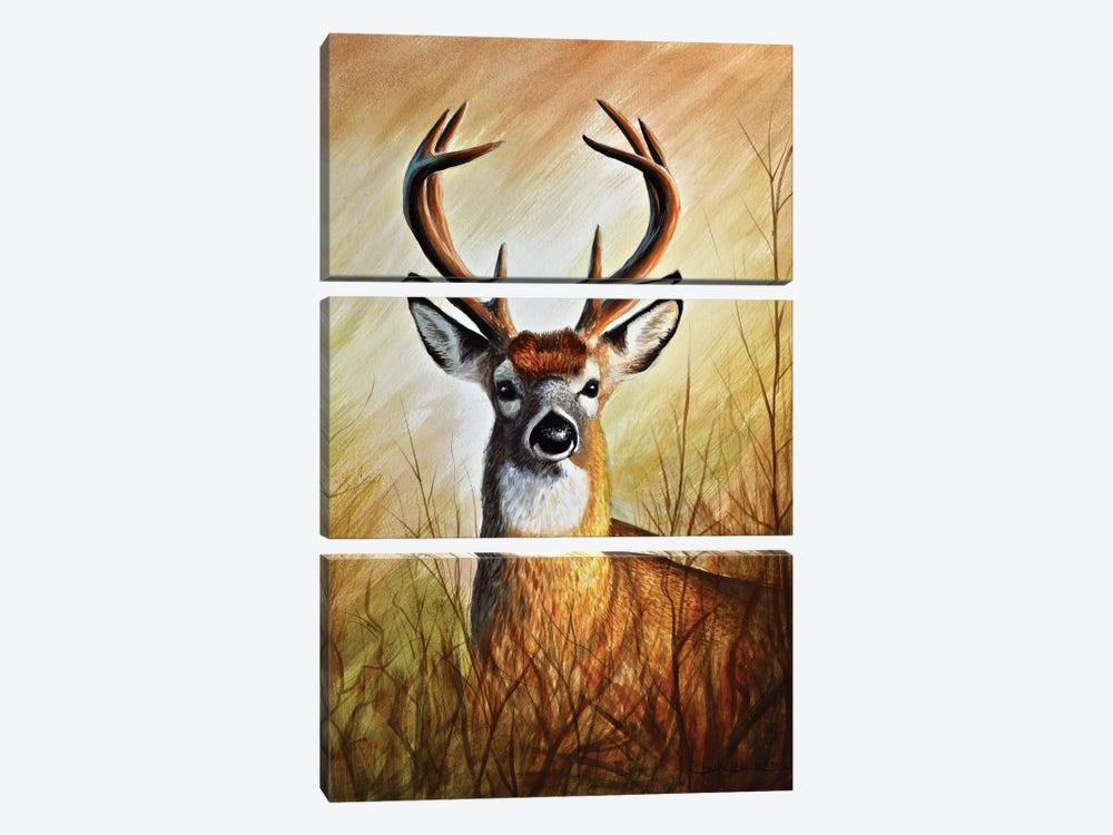 Backwood's Monarch by Chuck Black 3-piece Canvas Wall Art