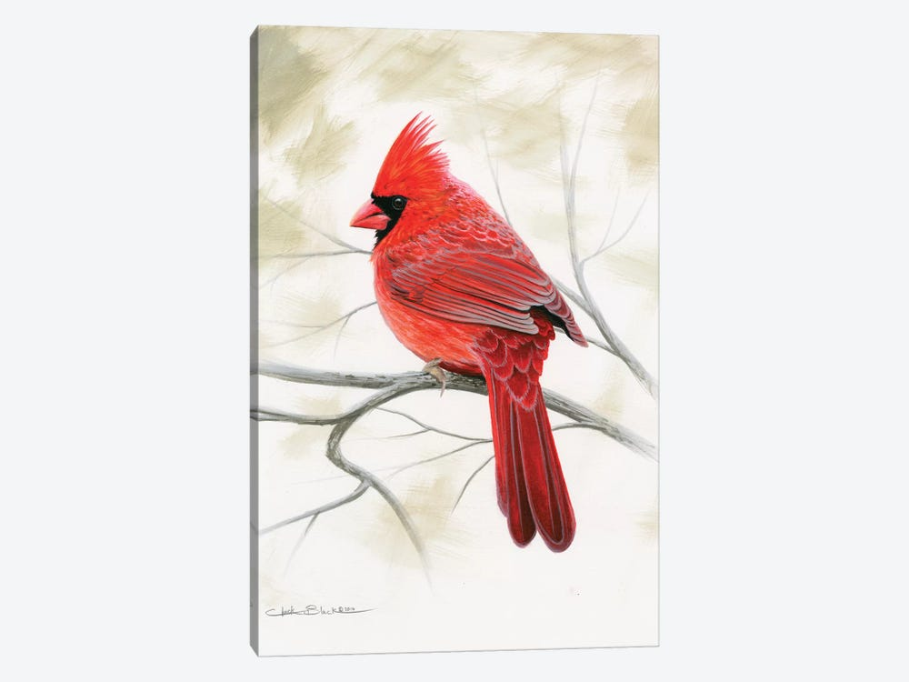Beauty In Red by Chuck Black 1-piece Canvas Art Print