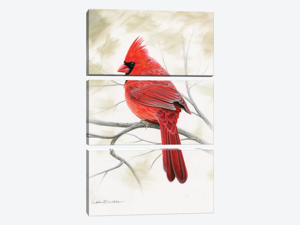 Beauty In Red by Chuck Black 3-piece Art Print