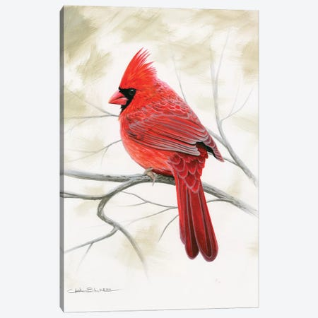 Beauty In Red Canvas Print #CHB15} by Chuck Black Canvas Artwork