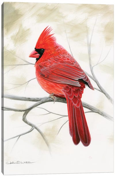 Beauty In Red Canvas Art Print