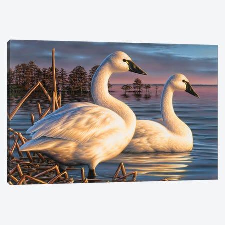 Evening Tundras Canvas Print #CHB24} by Chuck Black Canvas Print