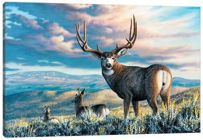 High Plains Legend Canvas Art Print