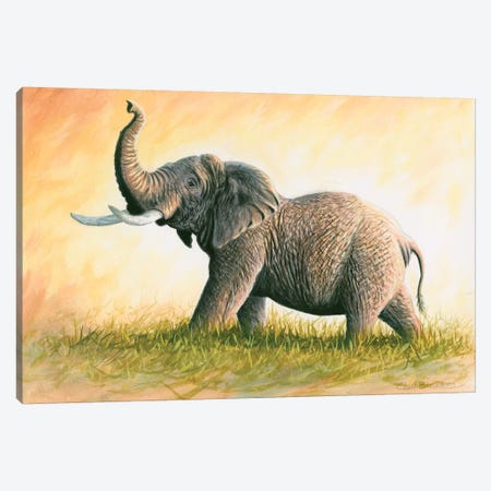 Majesty Canvas Print #CHB36} by Chuck Black Canvas Wall Art