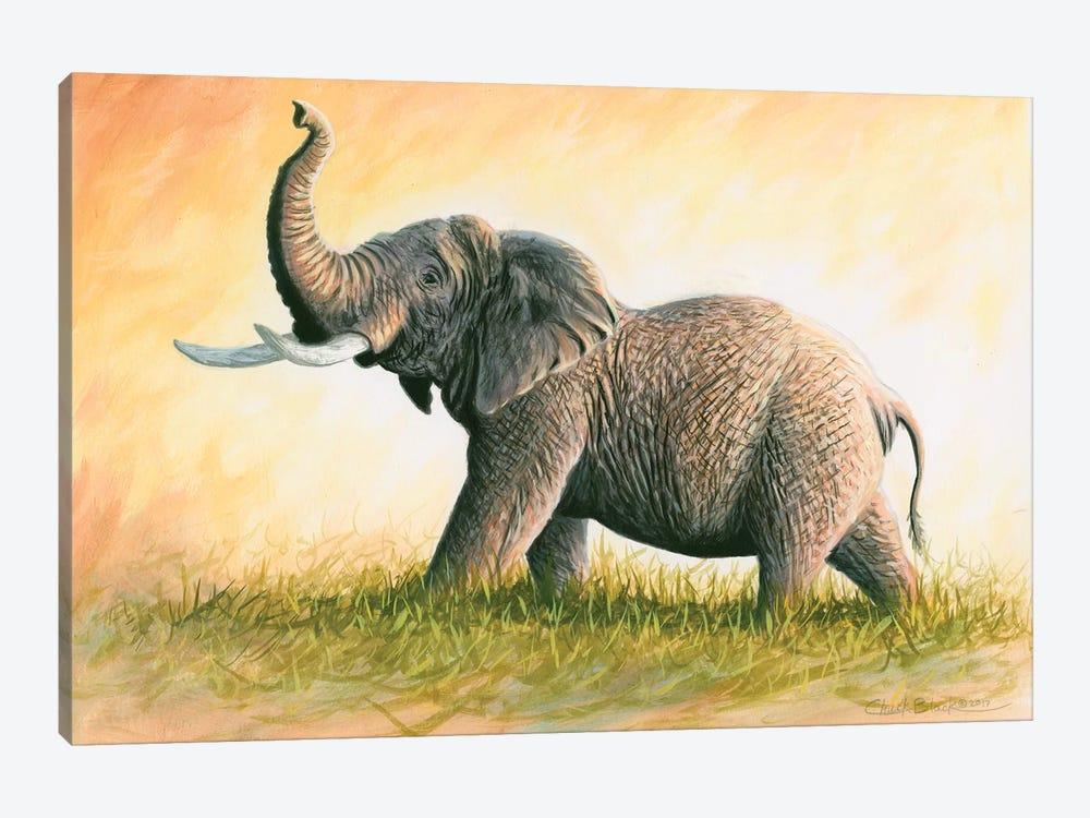 Majesty by Chuck Black 1-piece Canvas Art