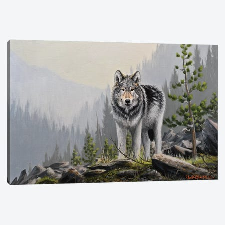 A Wild Domain Canvas Print #CHB3} by Chuck Black Canvas Print