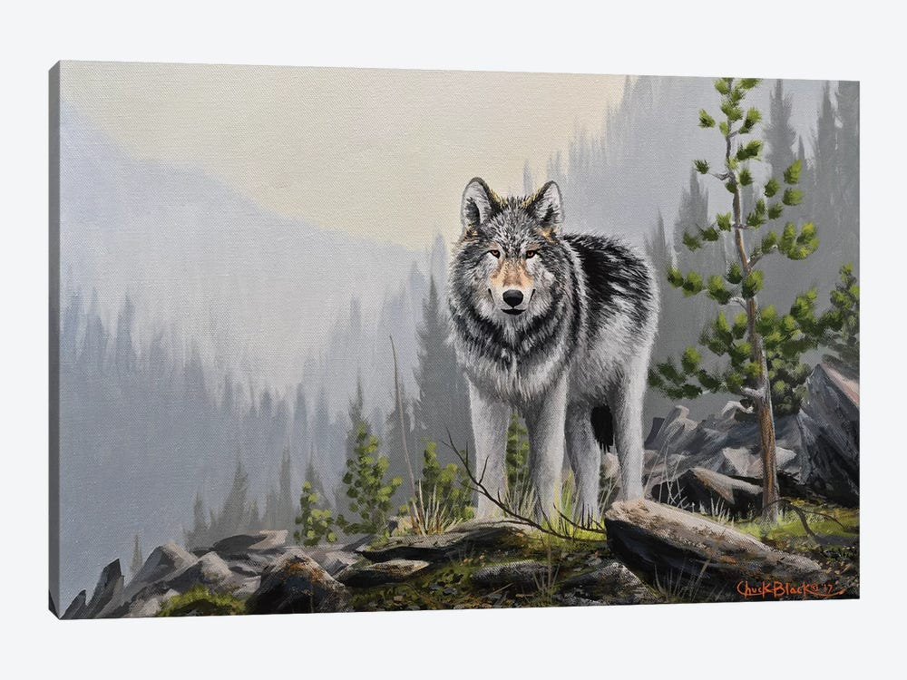 A Wild Domain by Chuck Black 1-piece Art Print