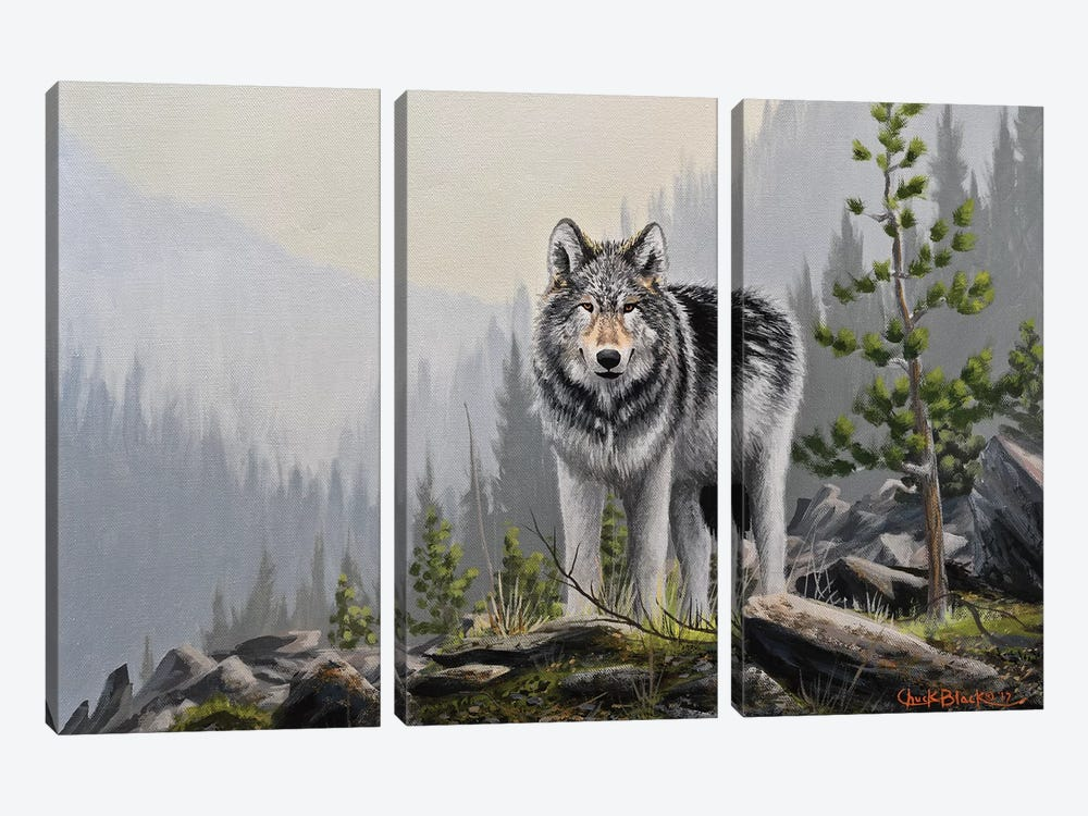 A Wild Domain by Chuck Black 3-piece Canvas Print