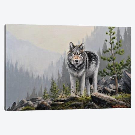 A Wild Domain Canvas Print #CHB3} by Chuck Black Canvas Print