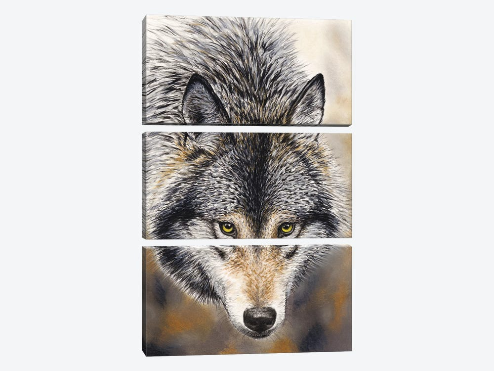Nature's Beauty by Chuck Black 3-piece Canvas Art Print