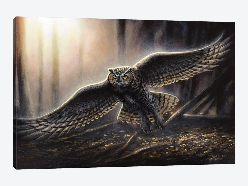 Out Of The Dark by Chuck Black 1-piece Canvas Art