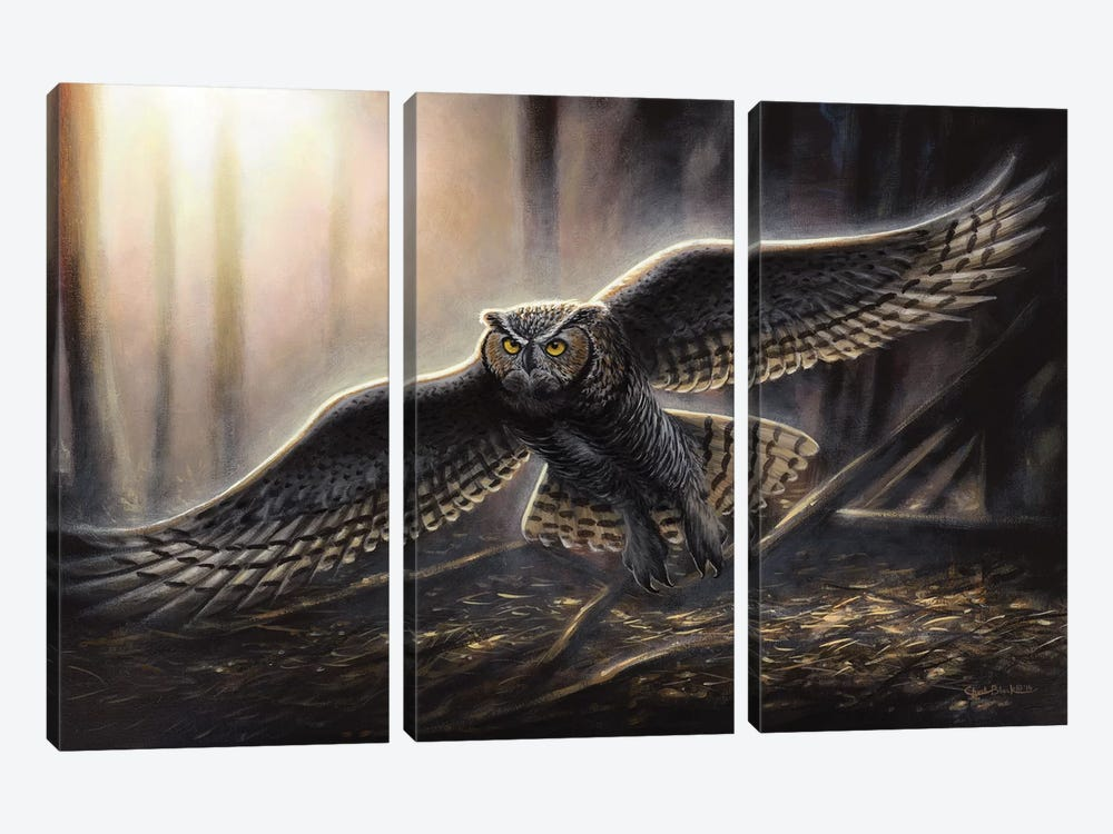 Out Of The Dark by Chuck Black 3-piece Canvas Art