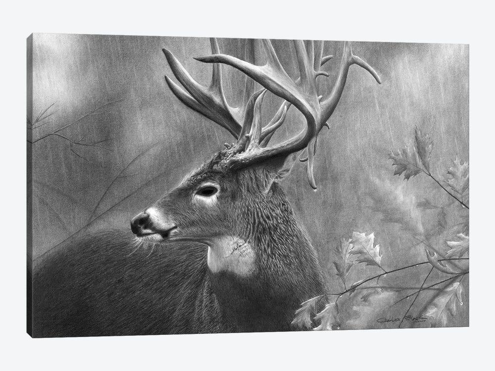 Rainy Days by Chuck Black 1-piece Canvas Print
