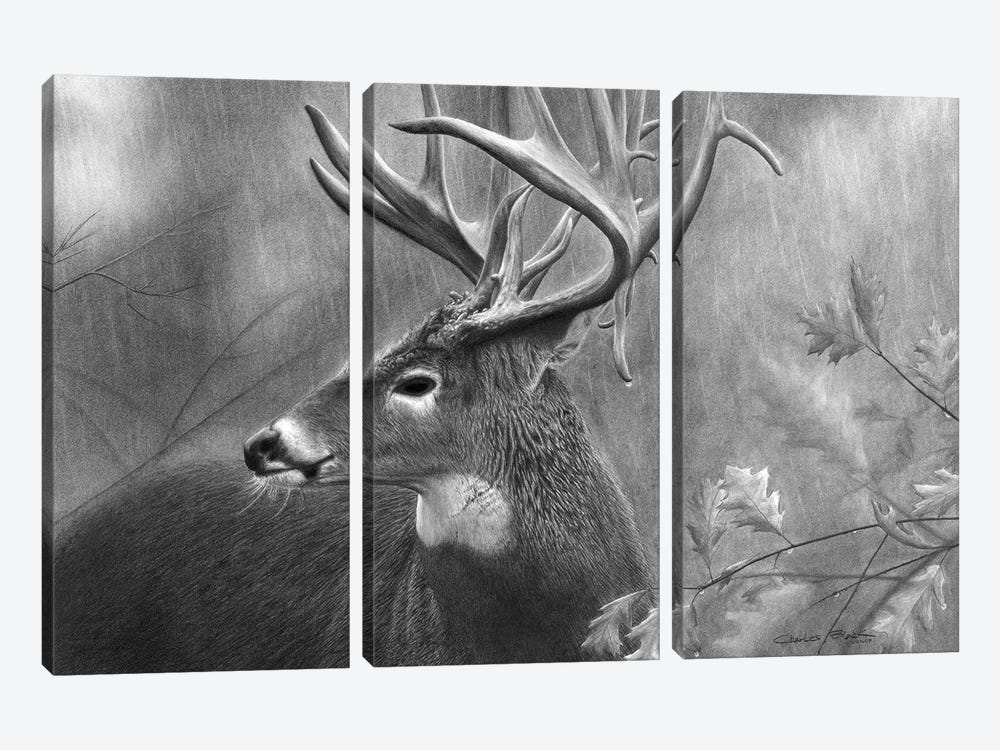 Rainy Days by Chuck Black 3-piece Canvas Print