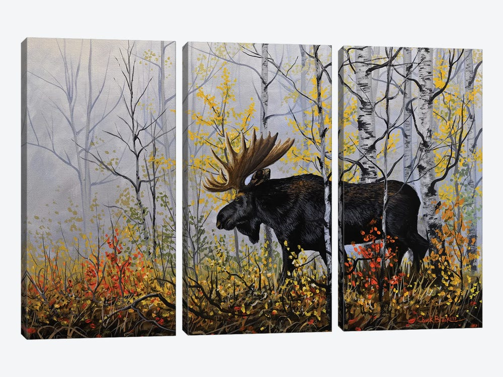 Rare Moments by Chuck Black 3-piece Canvas Art