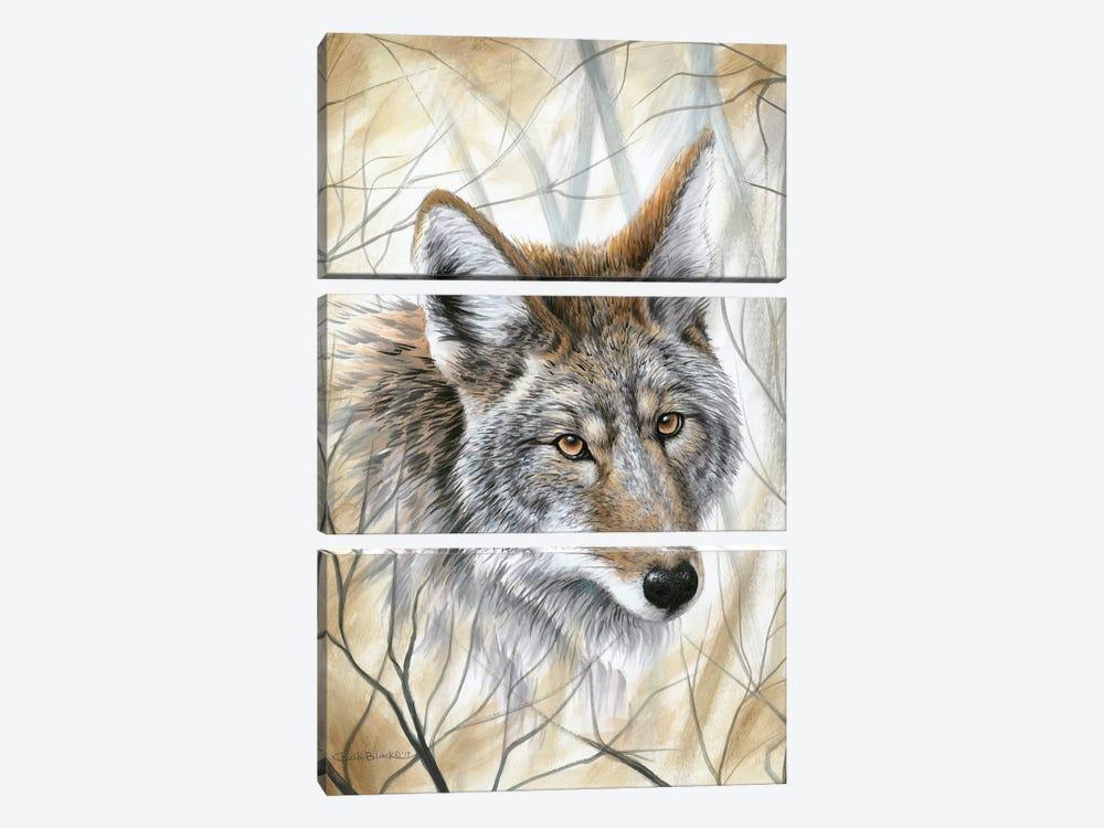 A Wild Gaze by Chuck Black 3-piece Canvas Art