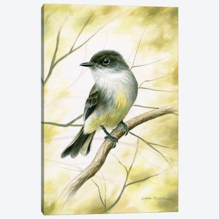 Spring Warmth Canvas Print #CHB55} by Chuck Black Canvas Artwork