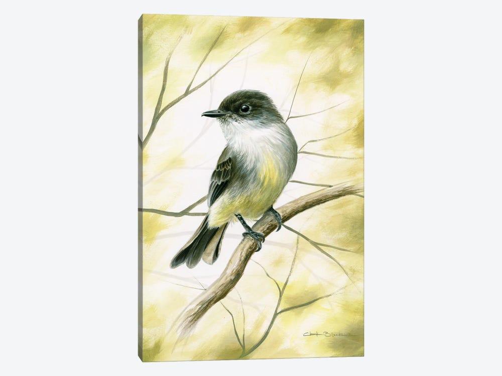 Spring Warmth by Chuck Black 1-piece Canvas Art Print