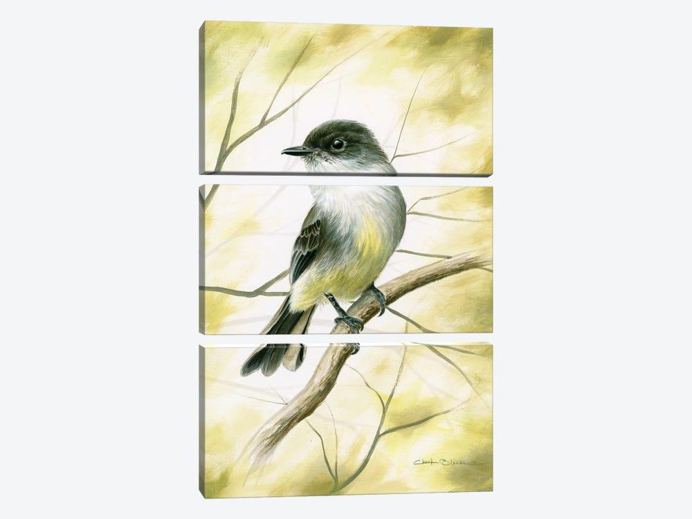 Spring Warmth by Chuck Black 3-piece Canvas Print