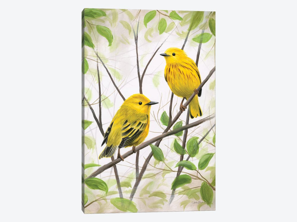 Springtime Warblers by Chuck Black 1-piece Canvas Art