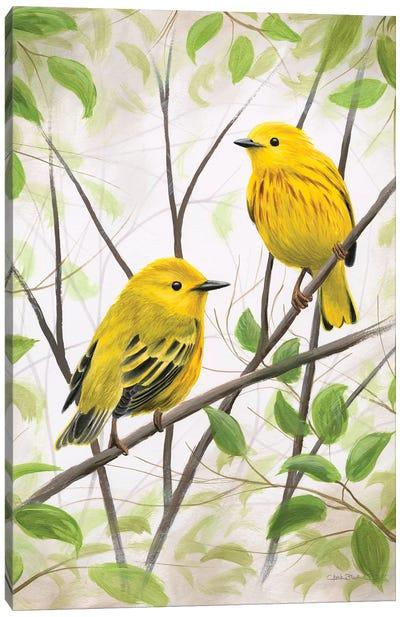 Springtime Warblers Canvas Art Print